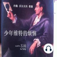 Die Leiden des jungen Werthers (in chinesischer Sprache)