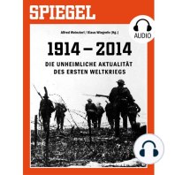 Die unheimliche Aktualität des Ersten Weltkriegs
