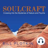 Soulcraft