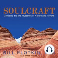 Soulcraft