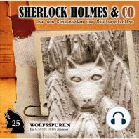 Sherlock Holmes & Co, Folge 25