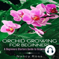 Orchid Growing for Beginners