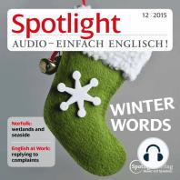 Englisch lernen Audio - Der Winter