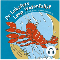 Do Lobsters Leap Waterfalls?