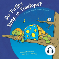 Do Turtles Sleep in Treetops?