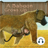 A Baboon Grows Up