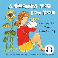 A Guinea Pig for You