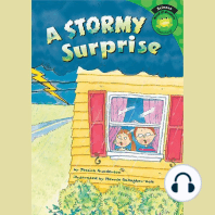 A Stormy Surprise