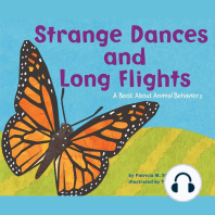 Strange Dances and Long Flights