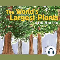 The World's Largest Plants