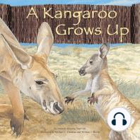 A Kangaroo Grows Up