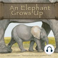 An Elephant Grows Up
