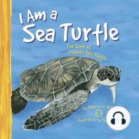 I Am a Sea Turtle