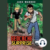 Geocache Surprise