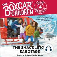 The Shackleton Sabotage