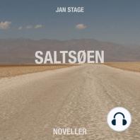 Saltsøen (uforkortet)