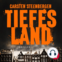 Tiefes Land, Band 1 (Amsterdam-Thriller)