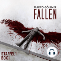 Fallen, Staffel 1, Box 1