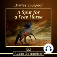 A Spur for a Free Horse