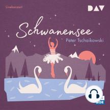 Schwanensee (Hörspiel Live)