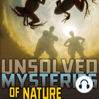 Unsolved Mysteries of Nature