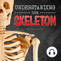 Understanding Our Skeleton
