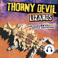 Thorny Devil Lizards and Other Extreme Reptile Adaptations