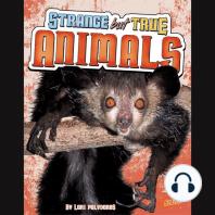 Strange but True Animals