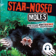 Star-Nosed Moles and Other Extreme Mammal Adaptations