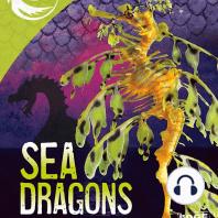 Sea Dragons