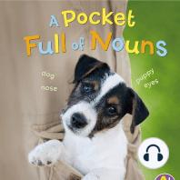 A Pocket Full of Nouns
