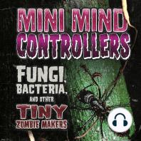 Mini Mind Controllers
