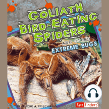Goliath Bird-Eating Spiders and Other Extreme Bugs