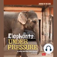 Elephants Under Pressure