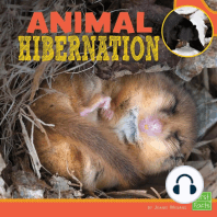 Animal Hibernation