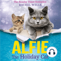 Alfie the Holiday Cat