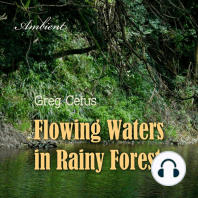 Flowing Waters in Rainy Forest