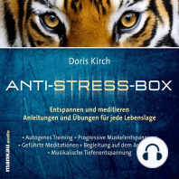 Geführte Meditationen (Hörbuch 3 aus der Anti-Stress-Box)