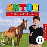 Anton, 7