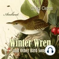 Winter Wren and Other Bird Songs