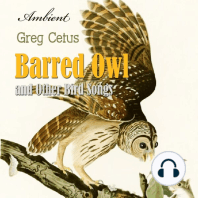 Barred Owl and Other Bird Songs