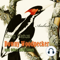Downy Woodpecker and Other Bird Songs: Nature Sounds for Awakening