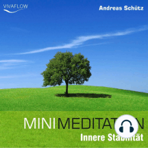 Mini Meditation - Innere Stabilität: Entspannung, Abbau von Stress & Selbsterkenntnis