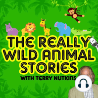 The Really Wild Animal Stories