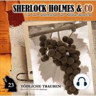 Sherlock Holmes & Co, Folge 23
