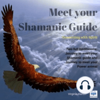 Meet Your Shamanic Guide