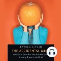 The Accidental Mind