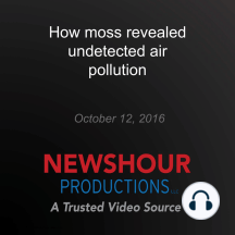 How moss revealed undetected air pollution