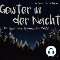 Geister in der Nacht. Nationalpark Bayerischer Wald (Ungekürzt)