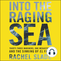Into the Raging Sea